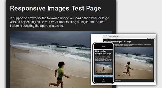 flexible image
