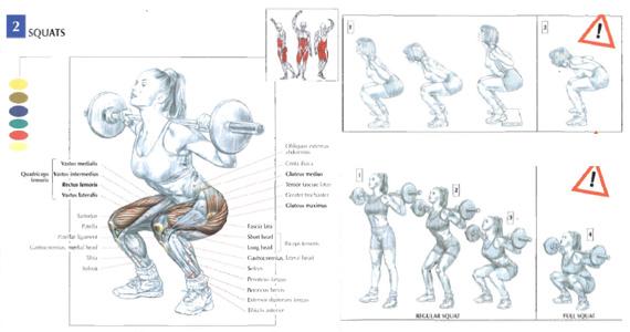 squats_1